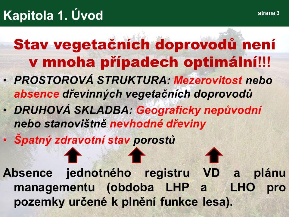 strana 44 Kapitola 3.Výsledky Metodika hodnocení VD 3) Tvorba geodatabáze VD 3.1 Datová část – C.