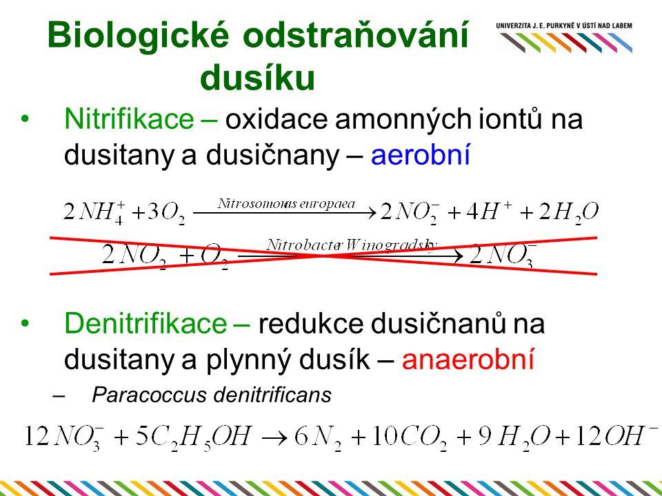 Nitrifikace – oxidace amonných iontů na dusitany a dusičnany – aerobní Denitrifikace – redukce dusičnanů na dusitany a plynný dusík – anaerobní –Parac