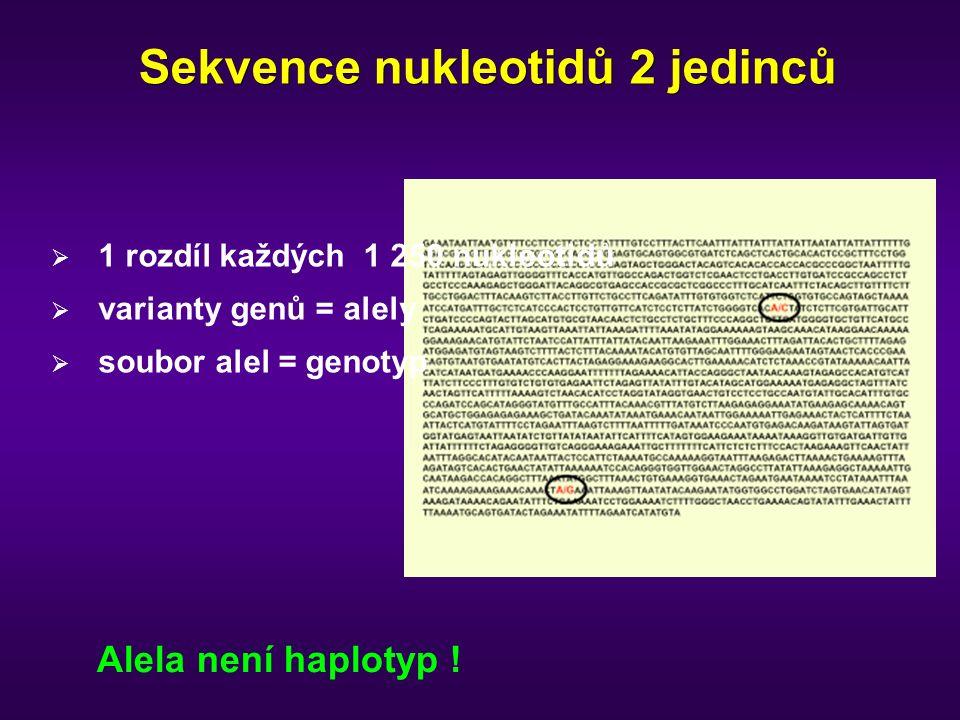 Sekvence nukleotidů 2 jedinců  1 rozdíl každých 1 250 nukleotidů  varianty genů = alely  soubor alel = genotyp Alela není haplotyp !