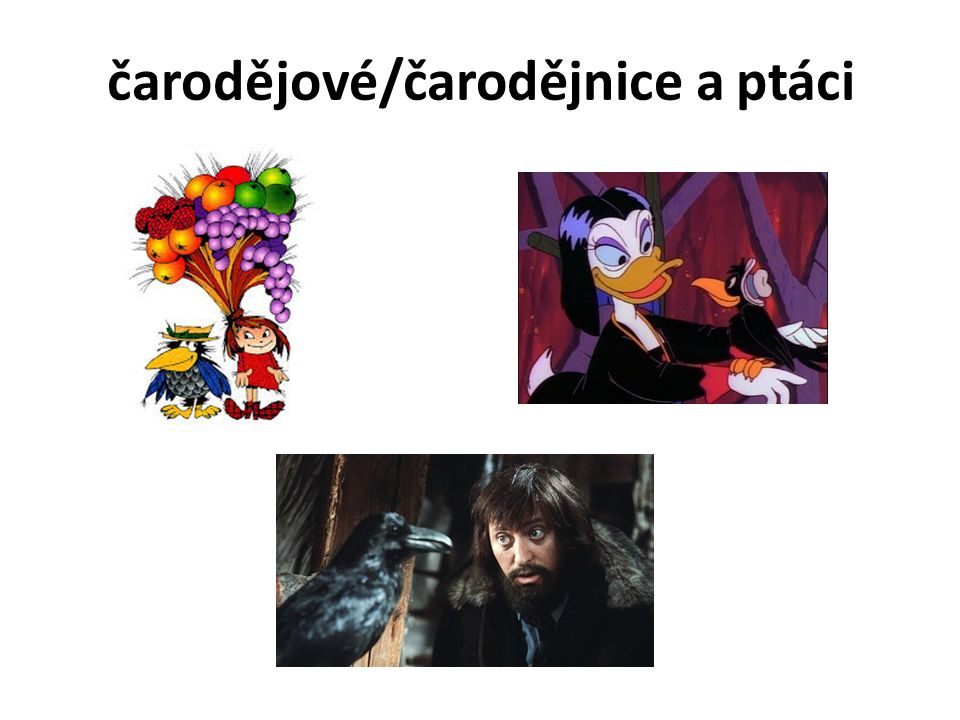 čarodějové/čarodějnice a ptáci