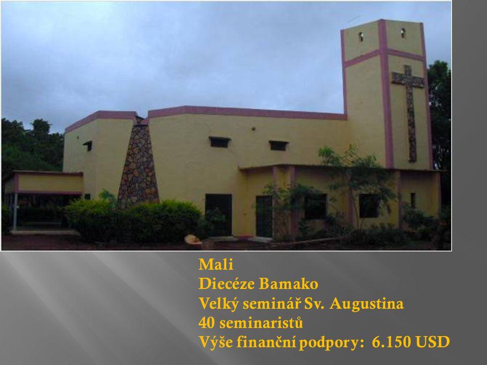 Mali Diecéze Bamako Velký seminá ř Sv. Augustina 40 seminarist ů Výše finan č ní podpory: 6.150 USD
