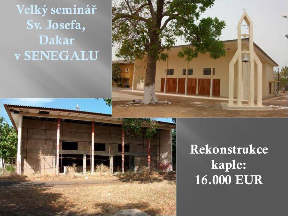 Velký seminá ř Sv. Josefa, Dakar v SENEGALU Rekonstrukce kaple: 16.000 EUR