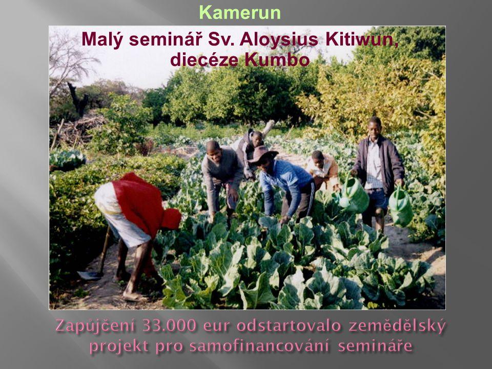 Kamerun Malý seminář Sv. Aloysius Kitiwun, diecéze Kumbo