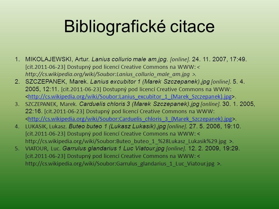 Bibliografické citace 1.MIKOLAJEWSKI, Artur. Lanius collurio male am.jpg.