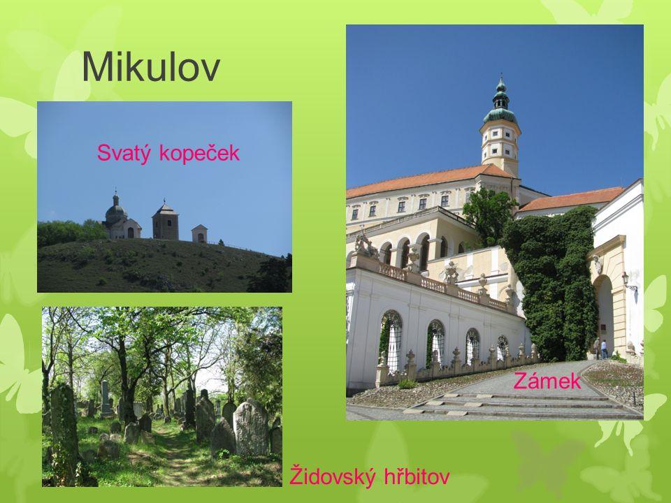 Mikulov Svatý kopeček Zámek Židovský hřbitov