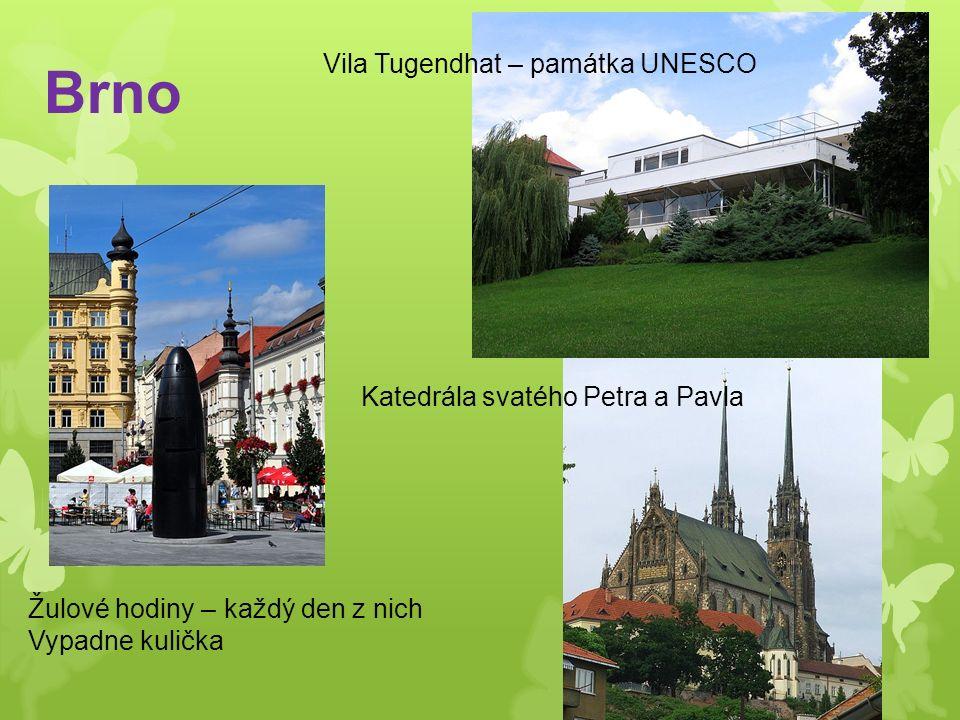 Brno Vila Tugendhat – památka UNESCO Katedrála svatého Petra a Pavla Žulové hodiny – každý den z nich Vypadne kulička