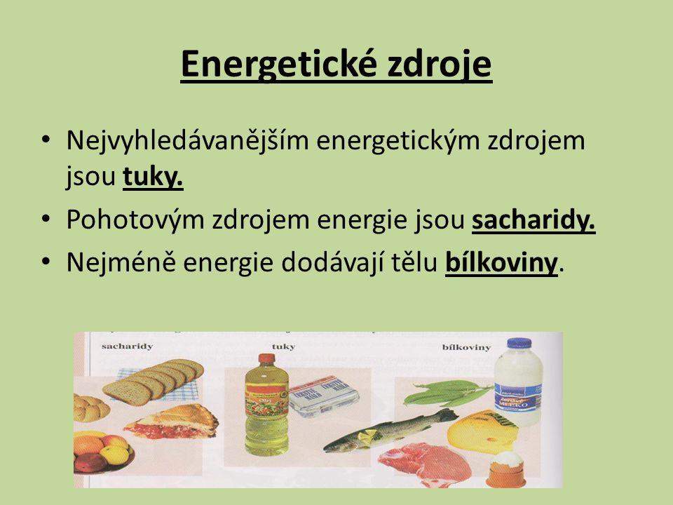 Během dne vydá každý člověk určitou energii a tu musí nahradit potravou Výdej energie závisí např.