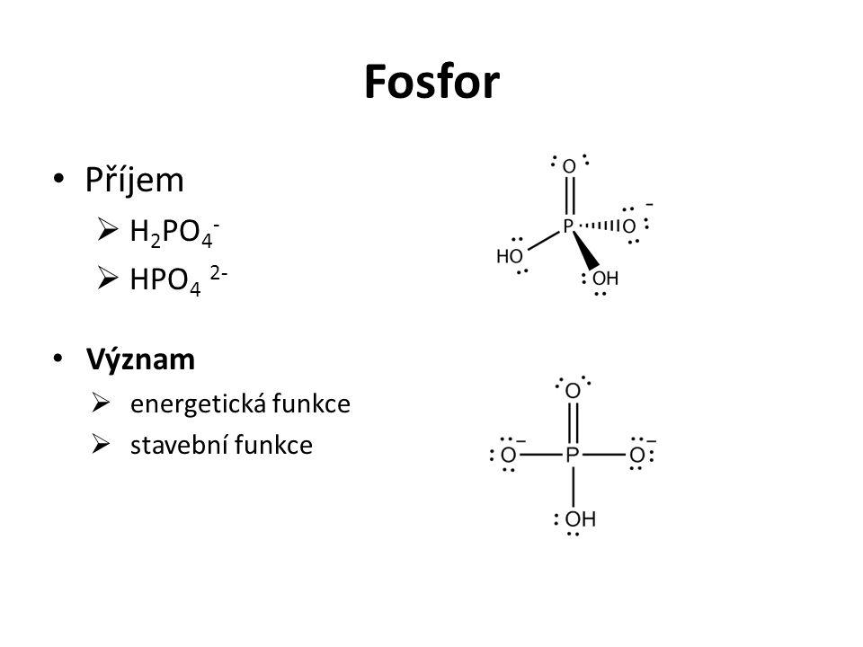 Fosfor Příjem  H 2 PO 4 -  HPO 4 2- Význam  energetická funkce  stavební funkce