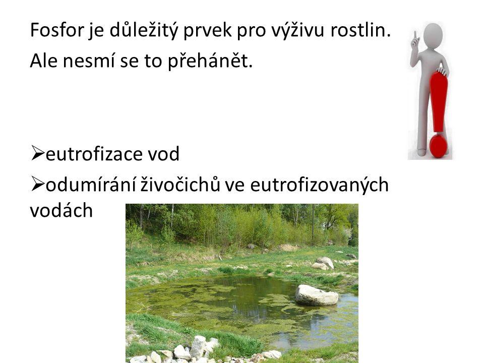 Fosfor je důležitý prvek pro výživu rostlin. Ale nesmí se to přehánět.
