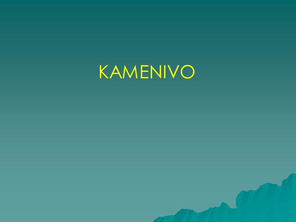 KAMENIVO