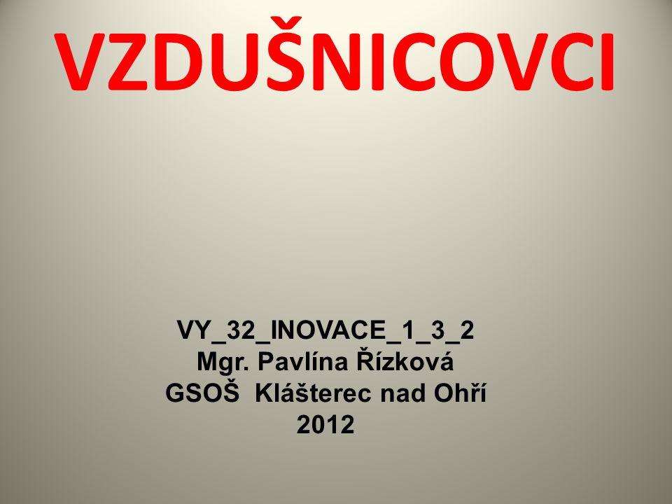 VZDUŠNICOVCI VY_32_INOVACE_1_3_2 Mgr. Pavlína Řízková GSOŠ Klášterec nad Ohří 2012