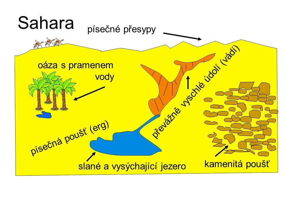 oáza s pramenem vody slané a vysýchající jezero písečné přesypy kamenitá poušť převážně vyschlé údolí (vádí) písečná poušť (erg) Sahara