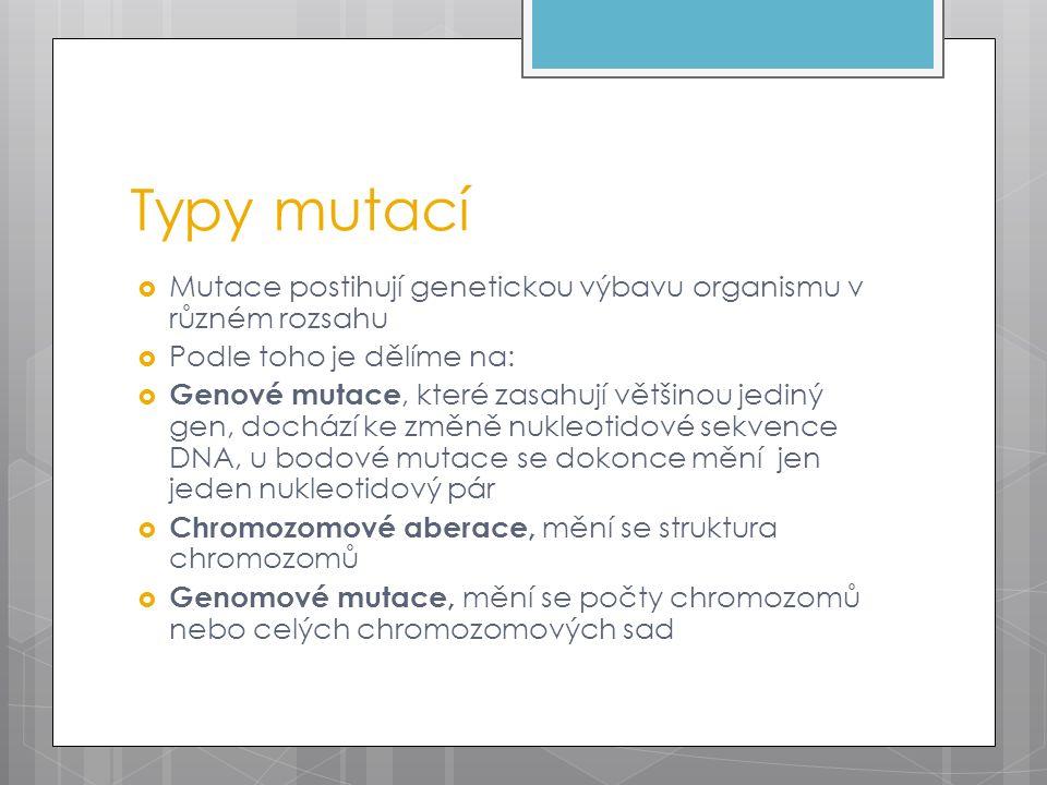 Typy mutací  Mutace postihují genetickou výbavu organismu v různém rozsahu  Podle toho je dělíme na:  Genové mutace, které zasahují většinou jediný gen, dochází ke změně nukleotidové sekvence DNA, u bodové mutace se dokonce mění jen jeden nukleotidový pár  Chromozomové aberace, mění se struktura chromozomů  Genomové mutace, mění se počty chromozomů nebo celých chromozomových sad