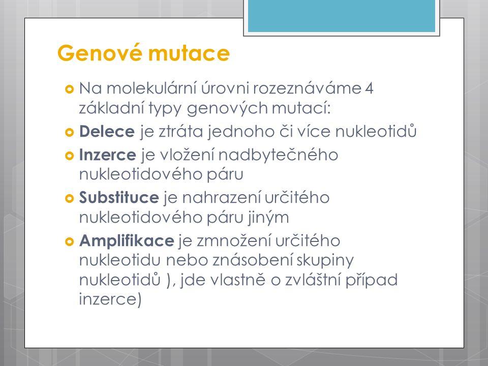 Genové mutace  Na molekulární úrovni rozeznáváme 4 základní typy genových mutací:  Delece je ztráta jednoho či více nukleotidů  Inzerce je vložení nadbytečného nukleotidového páru  Substituce je nahrazení určitého nukleotidového páru jiným  Amplifikace je zmnožení určitého nukleotidu nebo znásobení skupiny nukleotidů ), jde vlastně o zvláštní případ inzerce)