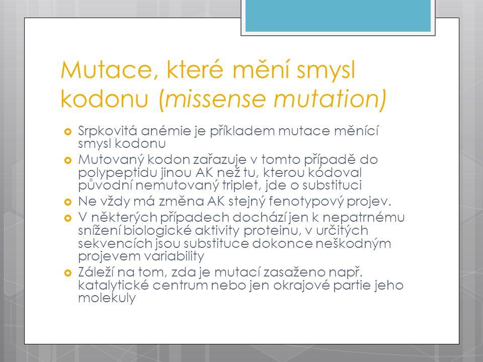 Mutace, které mění smysl kodonu (missense mutation)  Srpkovitá anémie je příkladem mutace měnící smysl kodonu  Mutovaný kodon zařazuje v tomto přípa
