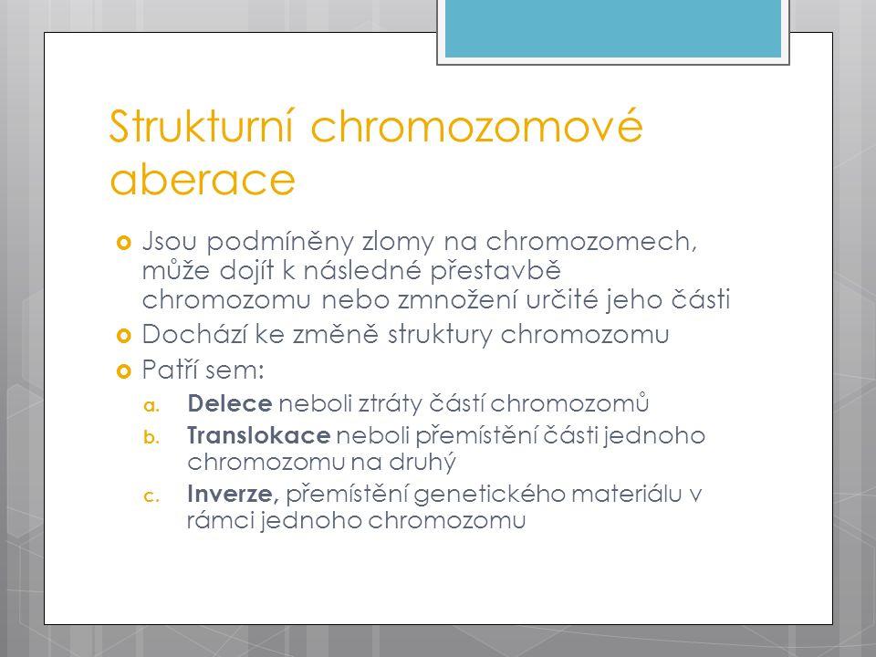 Strukturní chromozomové aberace  Jsou podmíněny zlomy na chromozomech, může dojít k následné přestavbě chromozomu nebo zmnožení určité jeho části  Dochází ke změně struktury chromozomu  Patří sem: a.