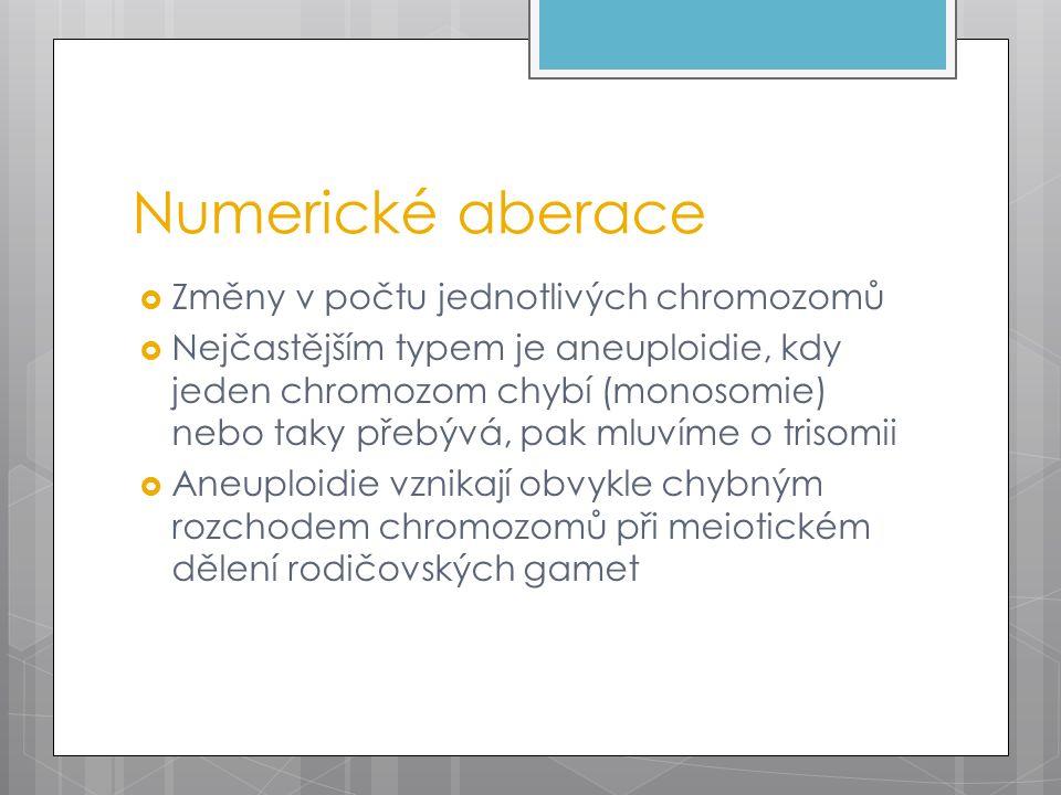 Numerické aberace  Změny v počtu jednotlivých chromozomů  Nejčastějším typem je aneuploidie, kdy jeden chromozom chybí (monosomie) nebo taky přebývá, pak mluvíme o trisomii  Aneuploidie vznikají obvykle chybným rozchodem chromozomů při meiotickém dělení rodičovských gamet