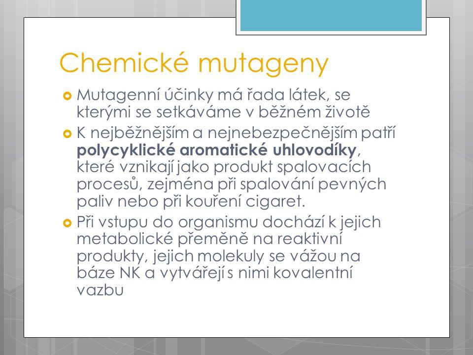 Chemické mutageny  Mutagenní účinky má řada látek, se kterými se setkáváme v běžném životě  K nejběžnějším a nejnebezpečnějším patří polycyklické aromatické uhlovodíky, které vznikají jako produkt spalovacích procesů, zejména při spalování pevných paliv nebo při kouření cigaret.