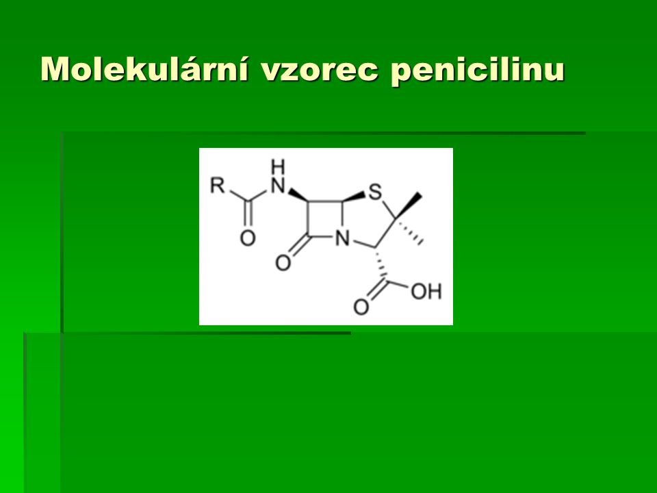 Penicillium na pomeranči