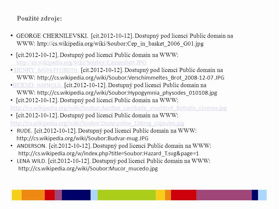 Použité zdroje: GEORGE CHERNILEVSKI. [cit.2012-10-12].