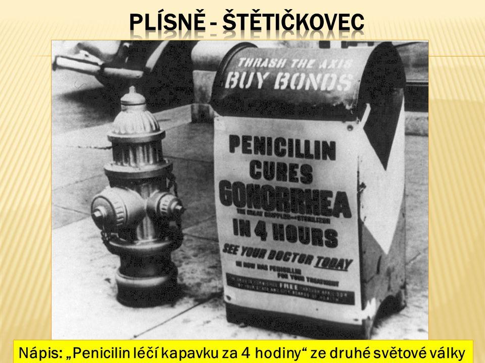 """Nápis: """"Penicilin léčí kapavku za 4 hodiny"""" ze druhé světové války"""