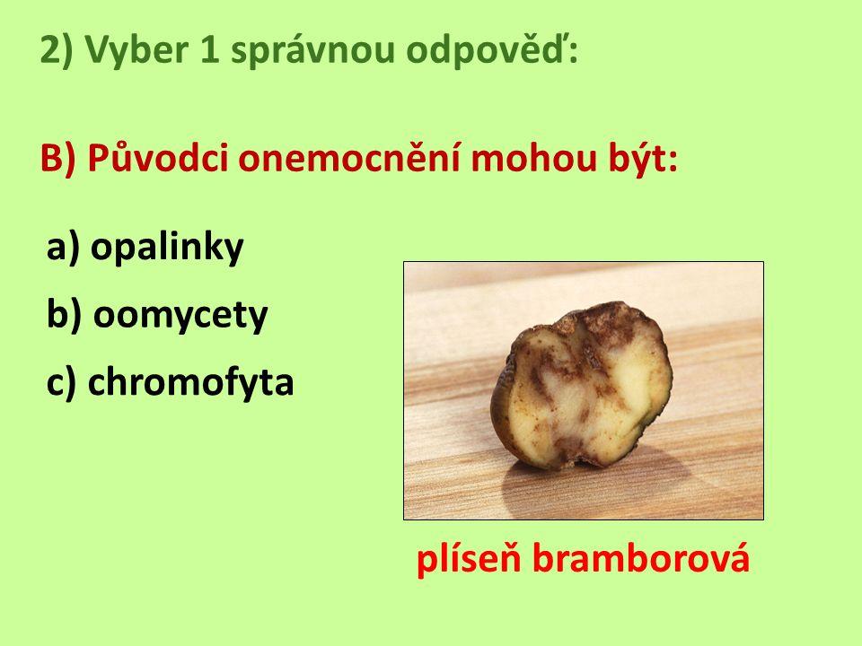 2) Vyber 1 správnou odpověď: B) Původci onemocnění mohou být: a) opalinky b) oomycety c) chromofyta plíseň bramborová