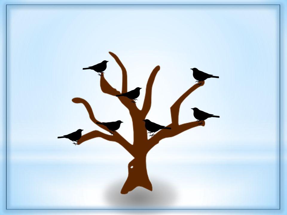 2. cvičení Na stromě sedělo 7 ptáčků. Všichni kromě třech odletěli. Kolik ptáčků zůstalo na stromě
