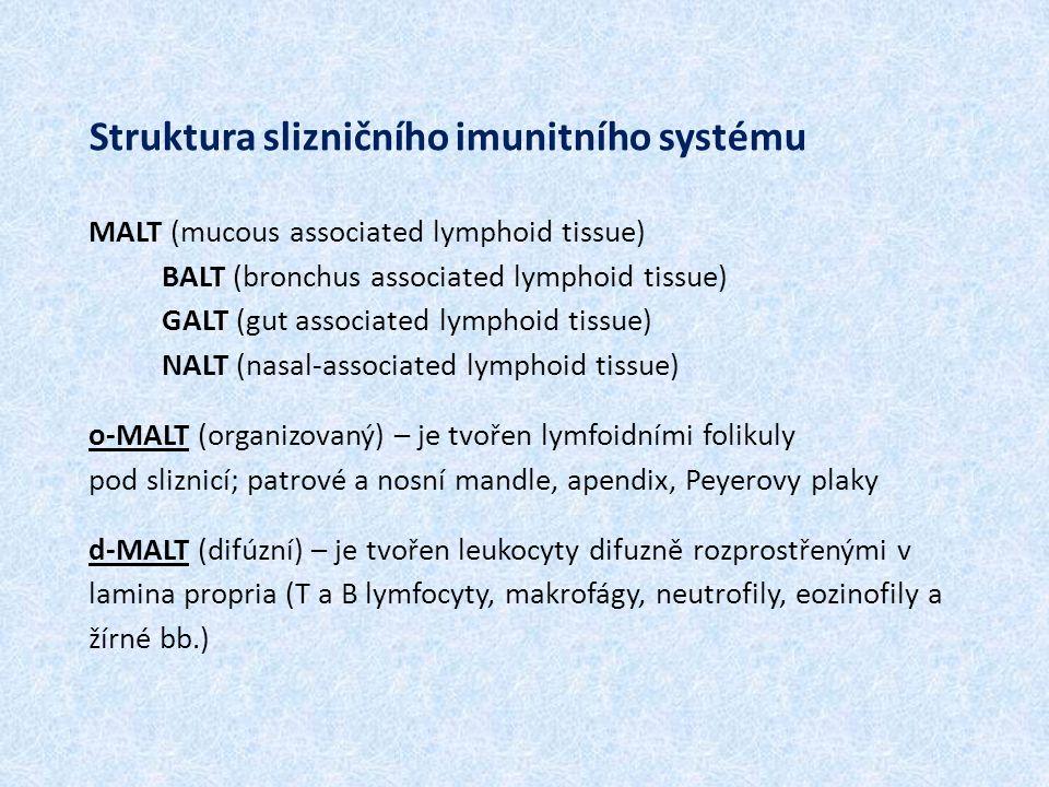 Struktura slizničního imunitního systému MALT (mucous associated lymphoid tissue) BALT (bronchus associated lymphoid tissue) GALT (gut associated lymphoid tissue) NALT (nasal-associated lymphoid tissue) o-MALT (organizovaný) – je tvořen lymfoidními folikuly pod sliznicí; patrové a nosní mandle, apendix, Peyerovy plaky d-MALT (difúzní) – je tvořen leukocyty difuzně rozprostřenými v lamina propria (T a B lymfocyty, makrofágy, neutrofily, eozinofily a žírné bb.)