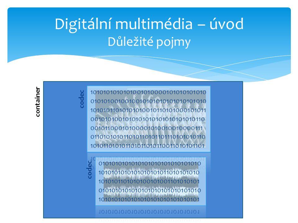 container Digitální multimédia – úvod Důležité pojmy codec