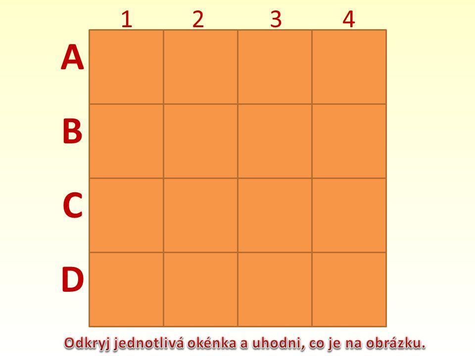 A B C D 1234