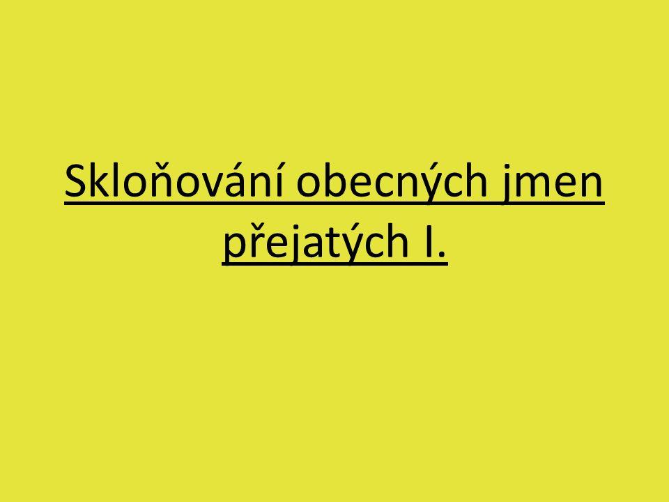 Skloňování obecných jmen přejatých I.