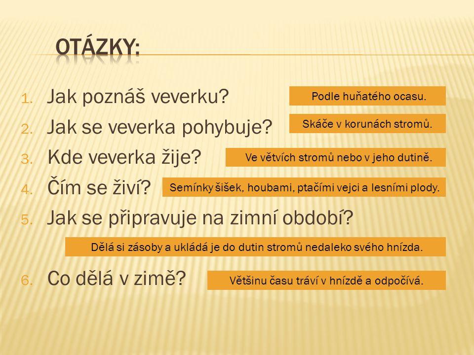 obr.2 - TOIVO TOIVANEN & TIINA TOPPILA. wikipedia.cz [online].
