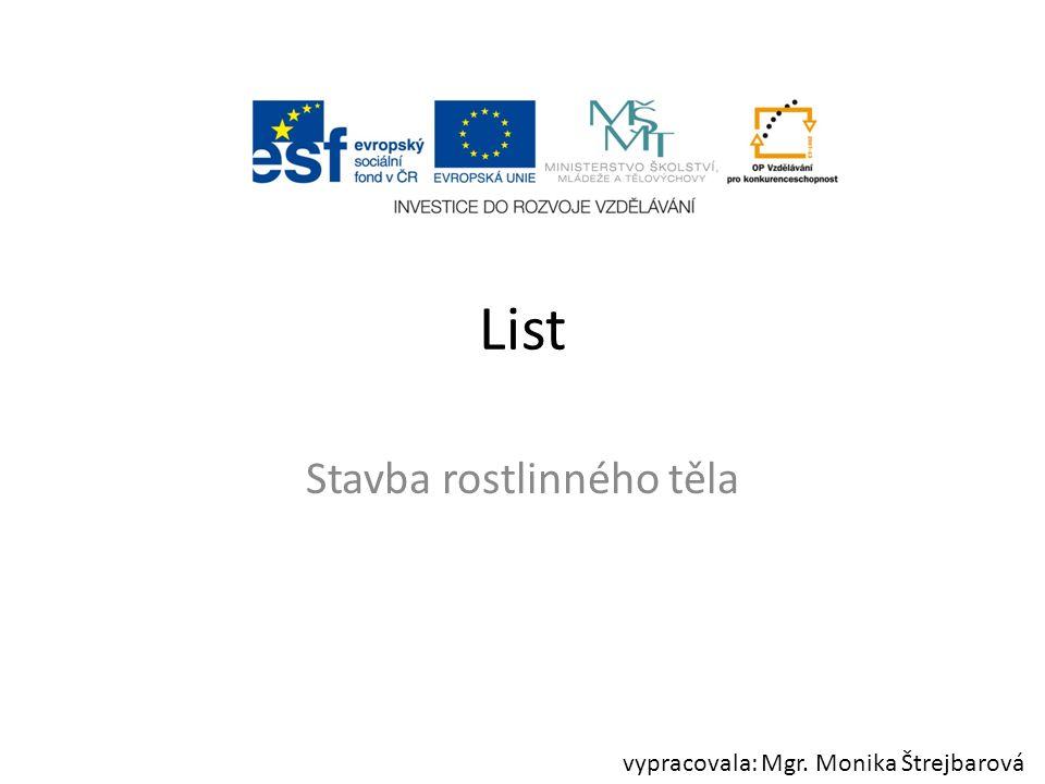 List Stavba rostlinného těla vypracovala: Mgr. Monika Štrejbarová