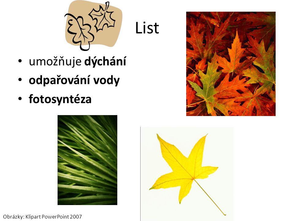 List umožňuje dýchání odpařování vody fotosyntéza Obrázky: Klipart PowerPoint 2007