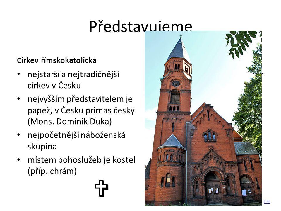 Představujeme Církev římskokatolická nejstarší a nejtradičnější církev v Česku nejvyšším představitelem je papež, v Česku primas český (Mons.