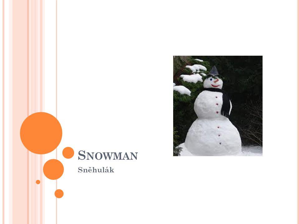 S NOWMAN Sněhulák