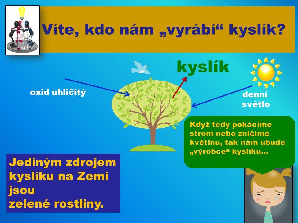 """Víte, kdo nám """"vyrábí kyslík.Jediným zdrojem kyslíku na Zemi jsou zelené rostliny."""