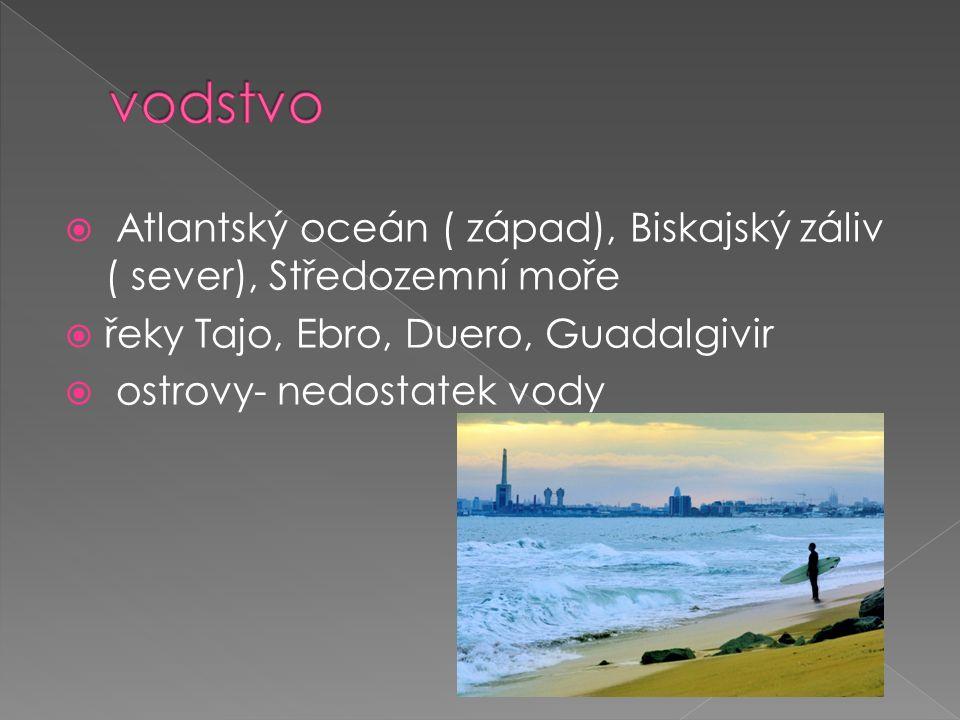  Atlantský oceán ( západ), Biskajský záliv ( sever), Středozemní moře  řeky Tajo, Ebro, Duero, Guadalgivir  ostrovy- nedostatek vody