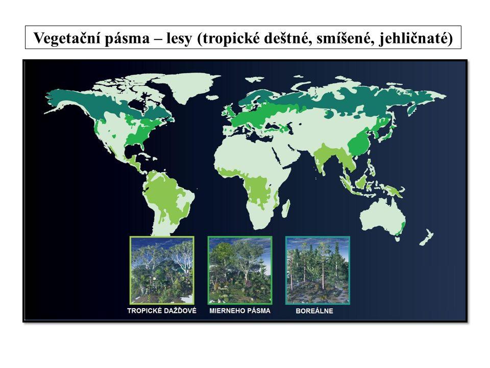 Vegetační pásma – lesy (tropické deštné, smíšené, jehličnaté)