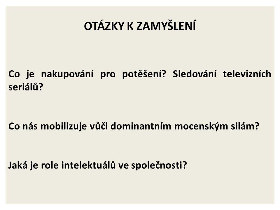 KULTURÁLNÍ STUDIA VS. POLITICKÁ EKONOMIE