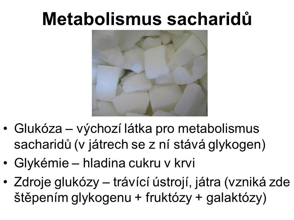 Metabolismus sacharidů Glukóza – výchozí látka pro metabolismus sacharidů (v játrech se z ní stává glykogen) Glykémie – hladina cukru v krvi Zdroje glukózy – trávící ústrojí, játra (vzniká zde štěpením glykogenu + fruktózy + galaktózy)