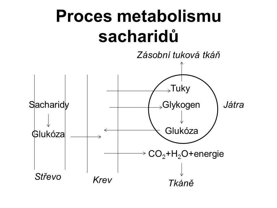 Proces metabolismu sacharidů Střevo Krev Tkáně Játra Zásobní tuková tkáň Tuky Sacharidy Glukóza CO 2 +H 2 O+energie Glykogen Glukóza