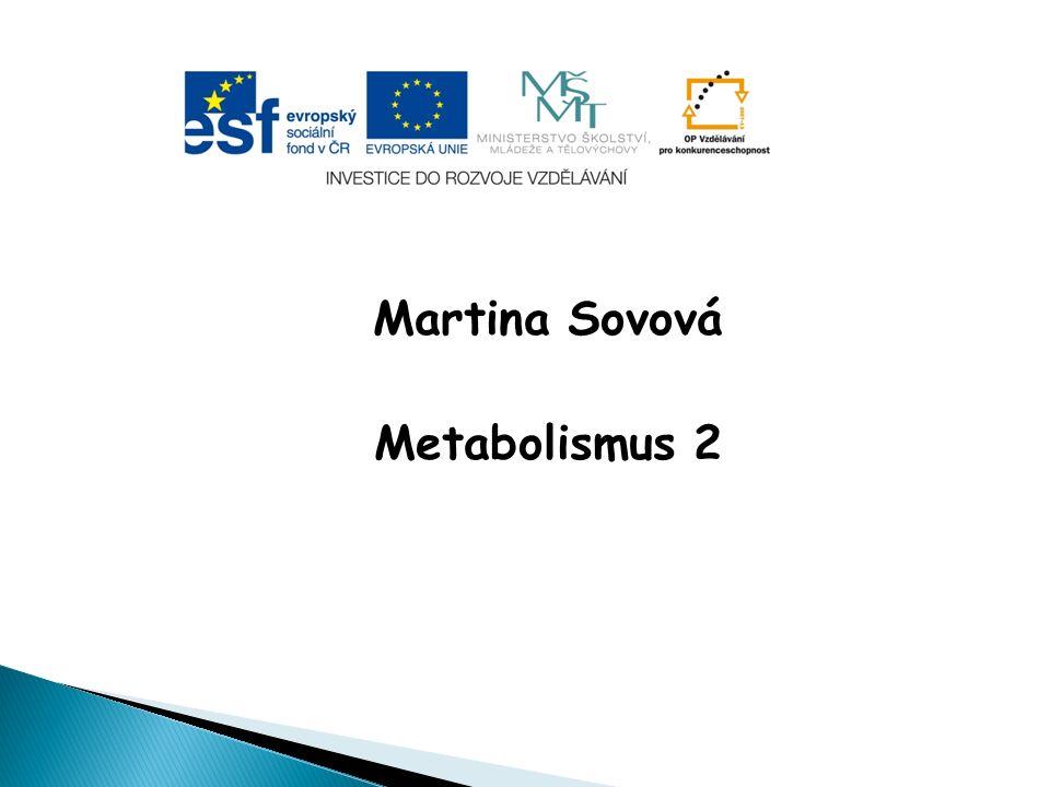 Martina Sovová Metabolismus 2