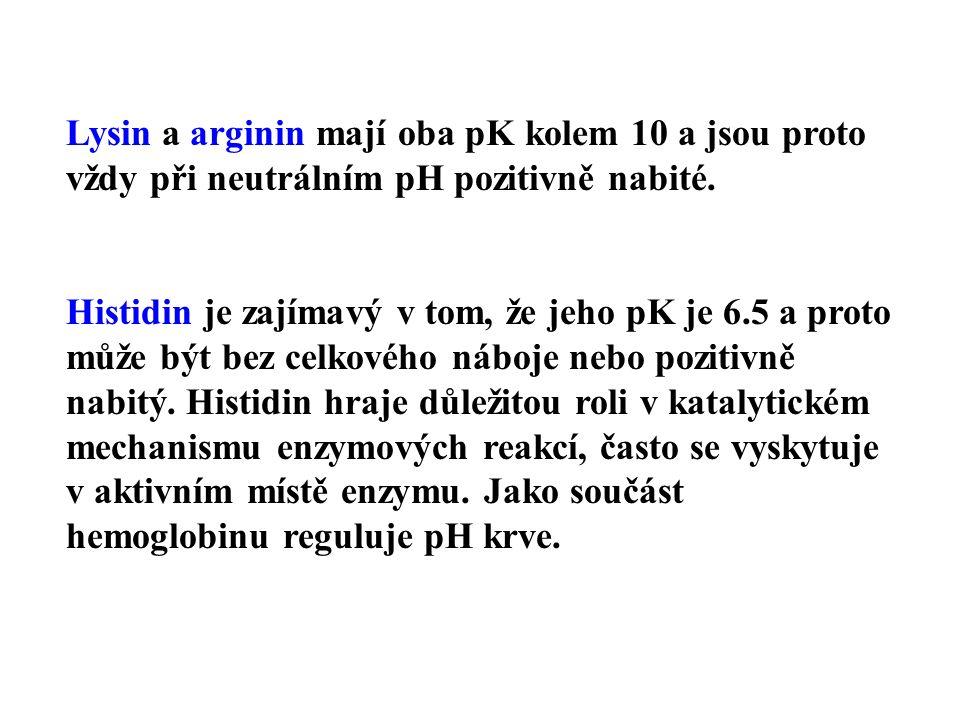 Lysin a arginin mají oba pK kolem 10 a jsou proto vždy při neutrálním pH pozitivně nabité.