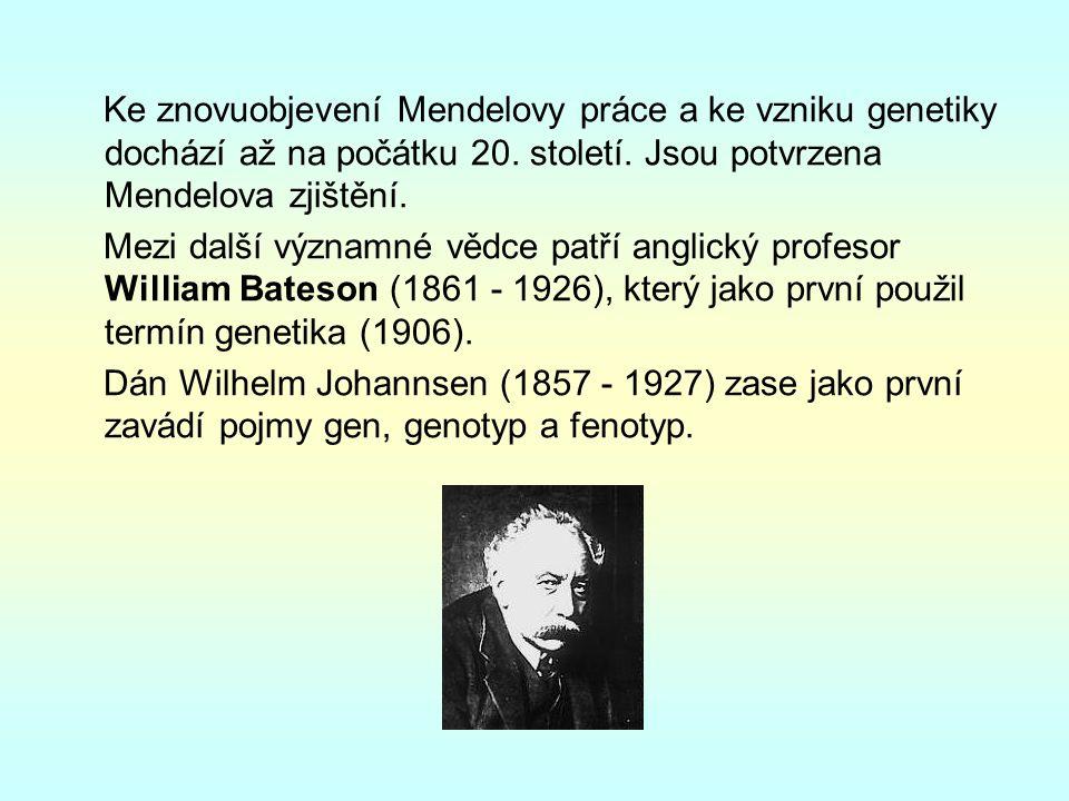 Ke znovuobjevení Mendelovy práce a ke vzniku genetiky dochází až na počátku 20.