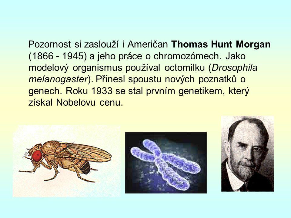 Pozornost si zaslouží i Američan Thomas Hunt Morgan (1866 - 1945) a jeho práce o chromozómech.