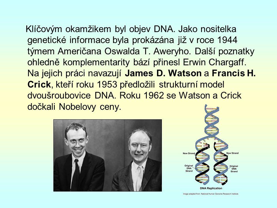 Klíčovým okamžikem byl objev DNA.