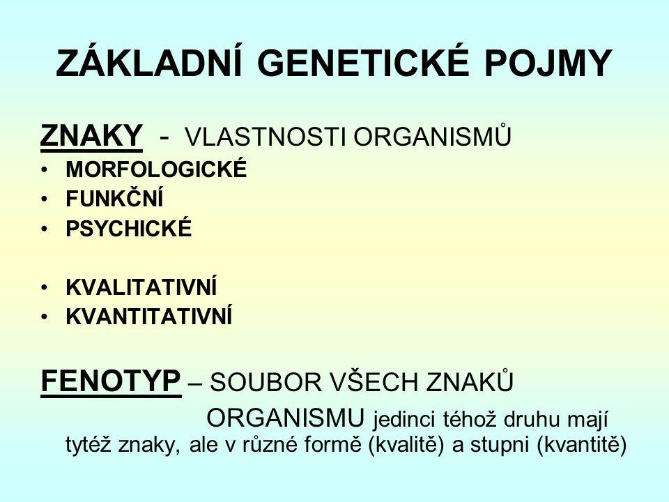 ZÁKLADNÍ GENETICKÉ POJMY ZNAKY - VLASTNOSTI ORGANISMŮ MORFOLOGICKÉ FUNKČNÍ PSYCHICKÉ KVALITATIVNÍ KVANTITATIVNÍ FENOTYP – SOUBOR VŠECH ZNAKŮ ORGANISMU jedinci téhož druhu mají tytéž znaky, ale v různé formě (kvalitě) a stupni (kvantitě)