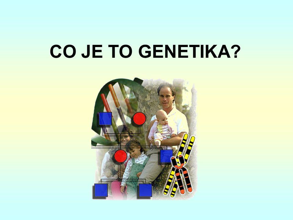 CO JE TO GENETIKA
