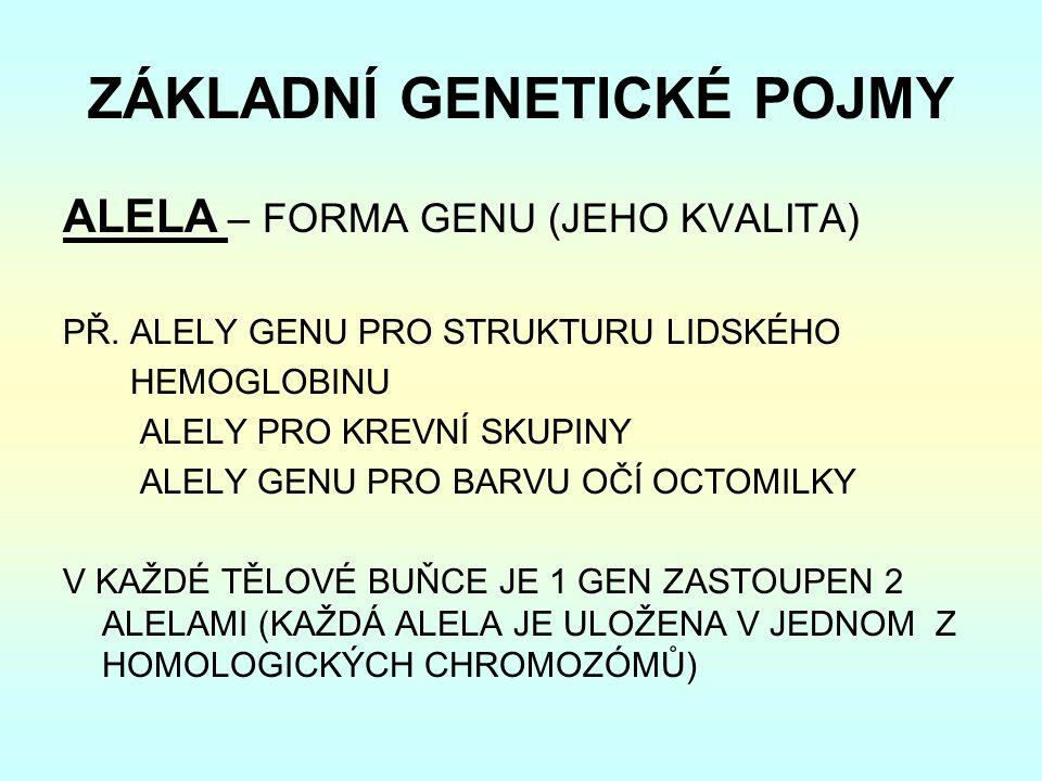 ZÁKLADNÍ GENETICKÉ POJMY ALELA – FORMA GENU (JEHO KVALITA) PŘ.